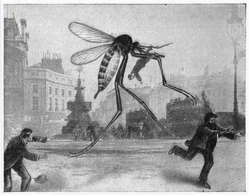dessin d'un moustique géant attaquant les passants