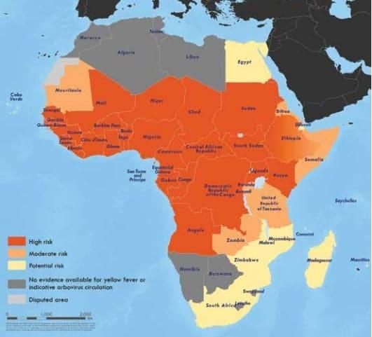 fièvre jaune afrique
