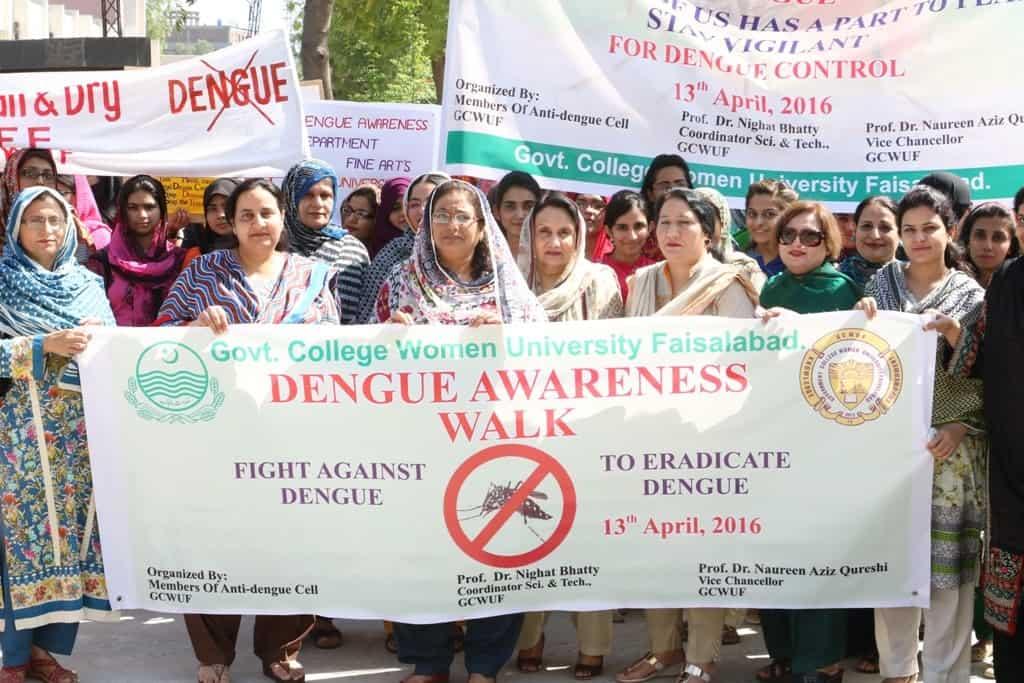campagne politique dengue