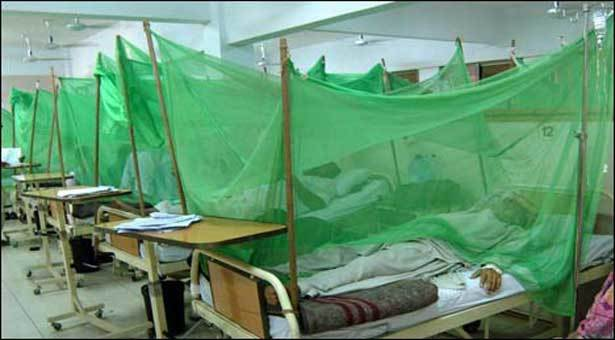 épidémie de dengue
