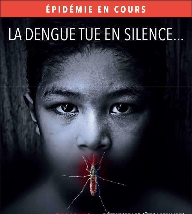 dengue réunion