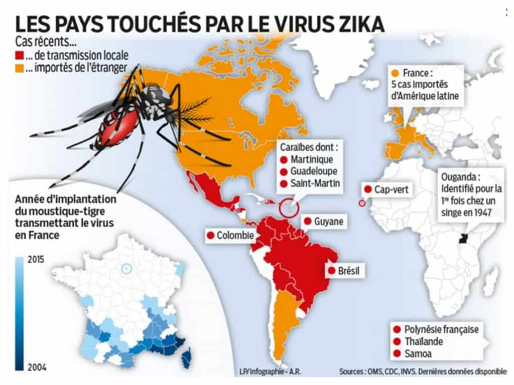 carte zones à risque zika moustique