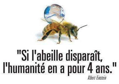 garder les abeilles