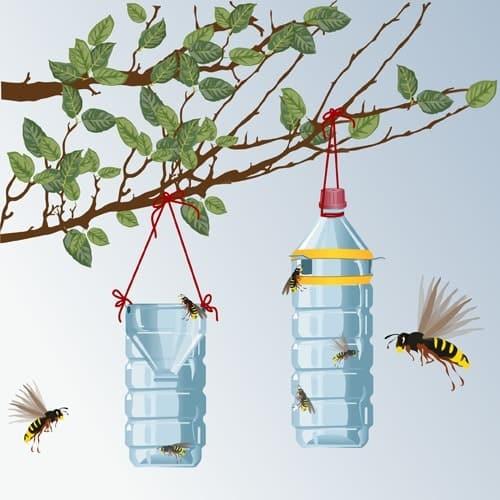 Fabriquer rapidement un piège à moustique