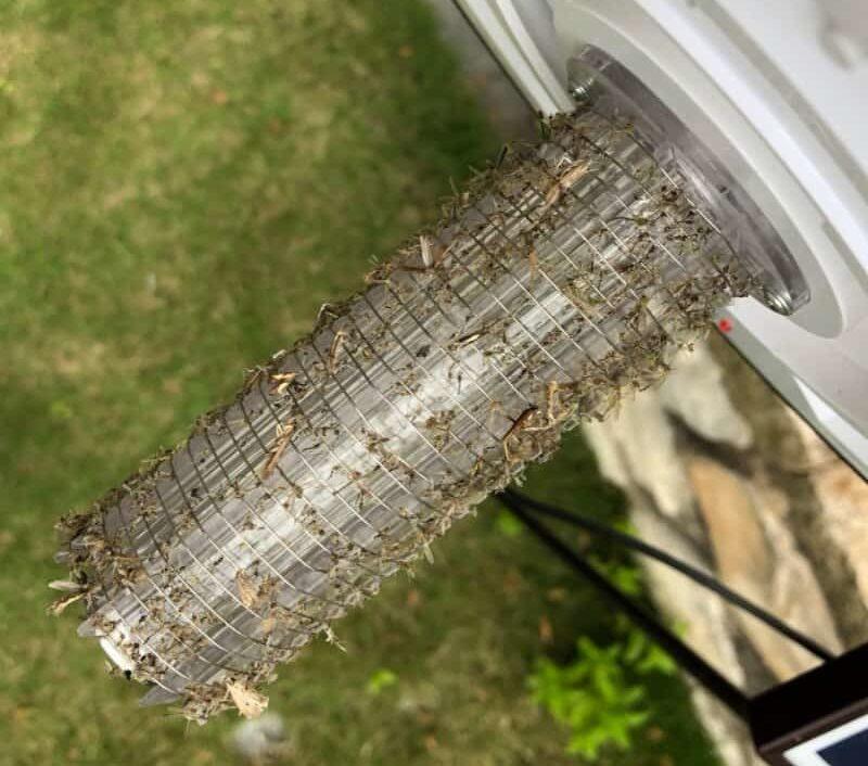 grille moustique
