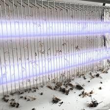 tue moustique électrique