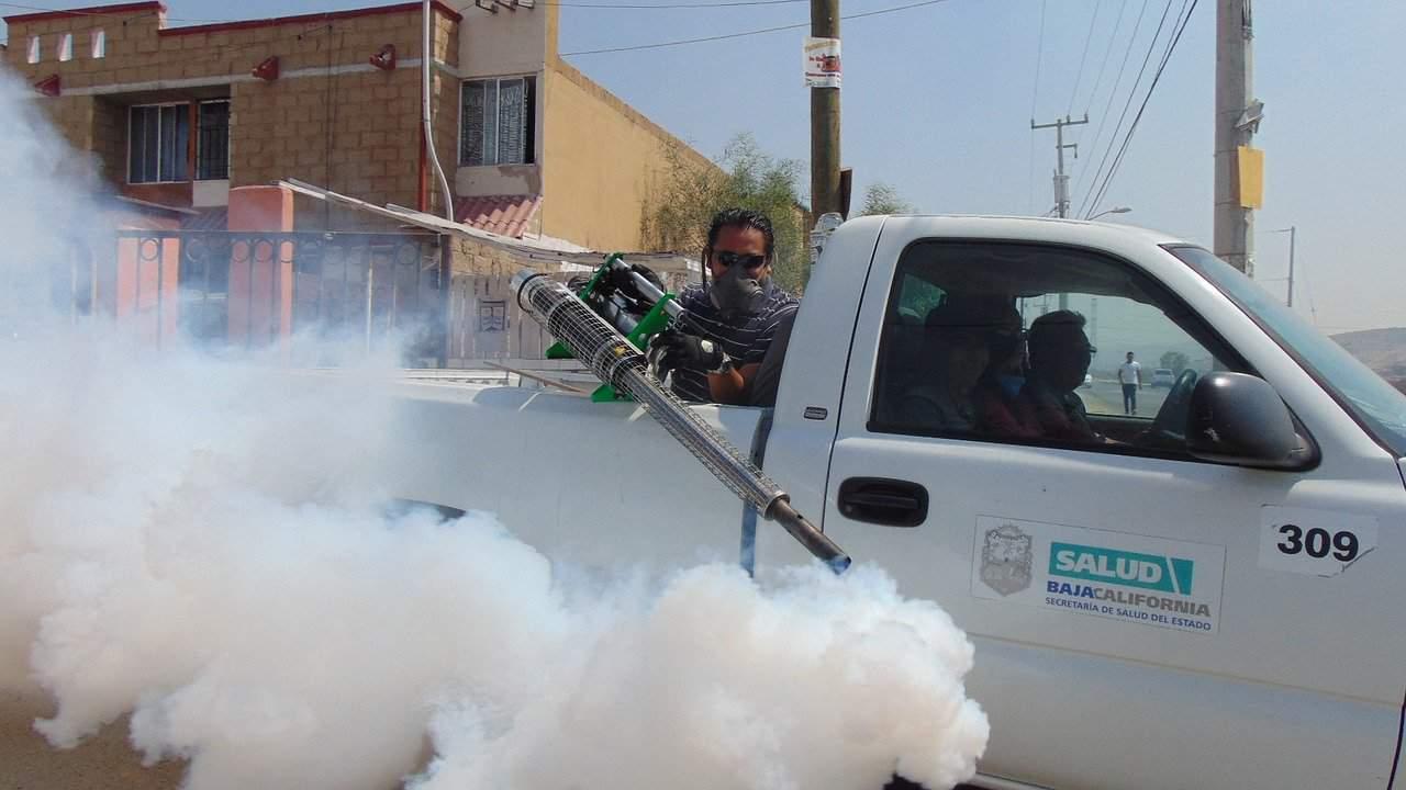 fumigène moustique