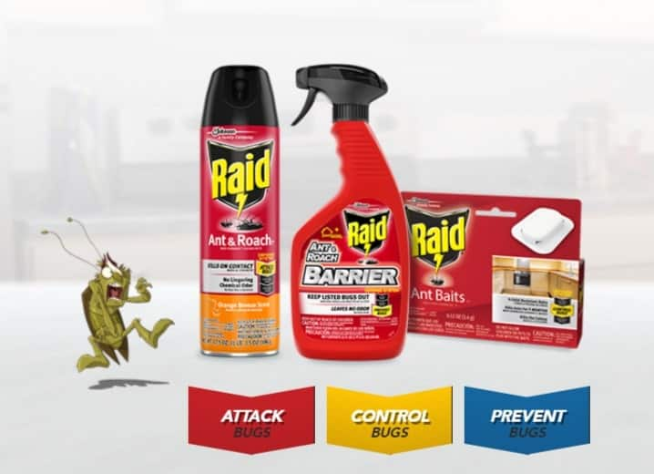 raid insecticide