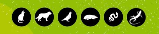 Liste d'icônes d'animaux
