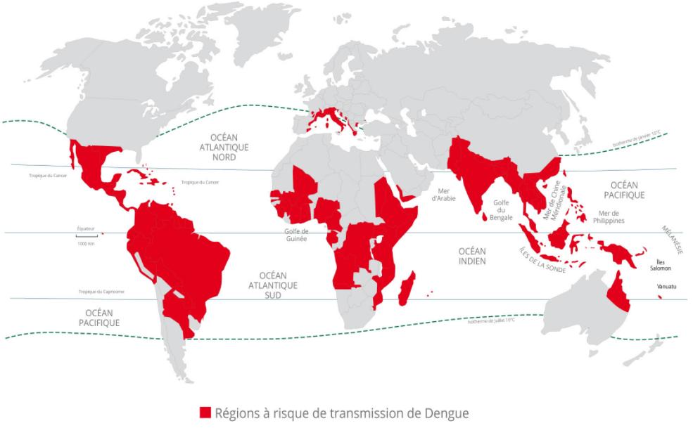 carte dengue dans le monde