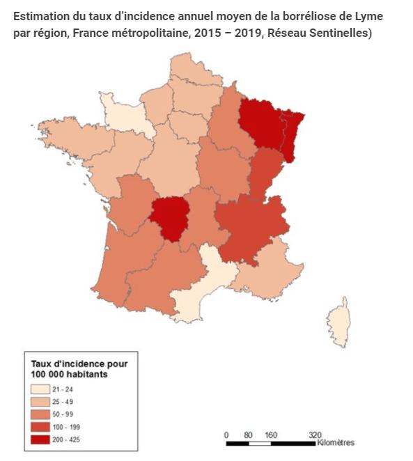 Carte de France de l'incidence de la maladie de Lyme