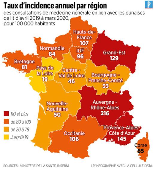 Punaises de lit en France